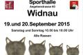Ausstellung Widnau 2015